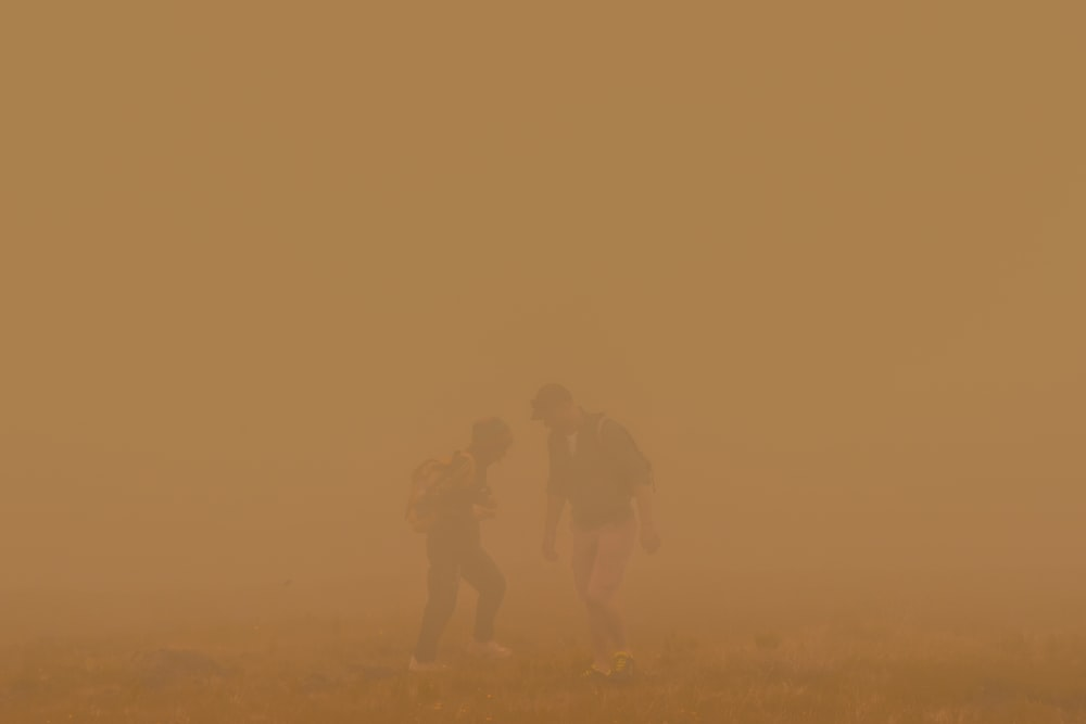 two person standing on mist
