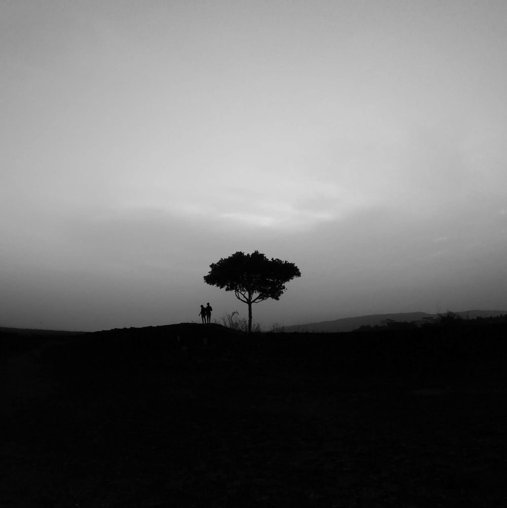 couple standing under lone tree on top of hill