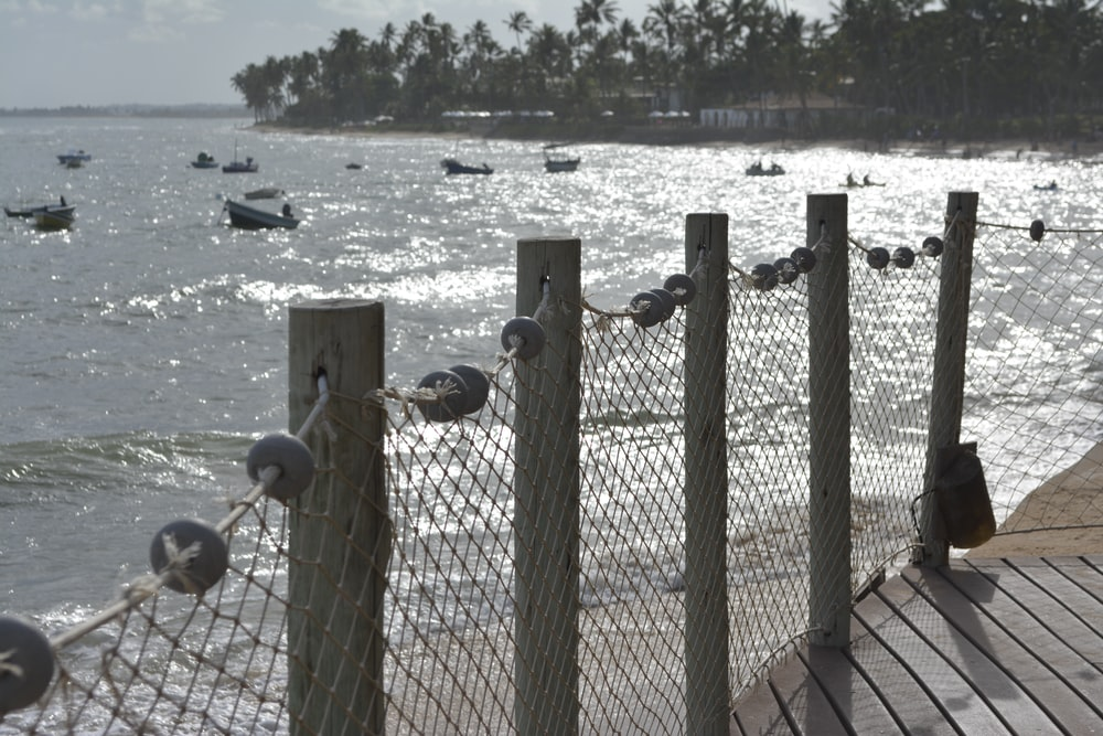 brown and gray fence beside body of water