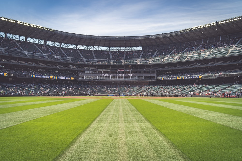 grass stadium field