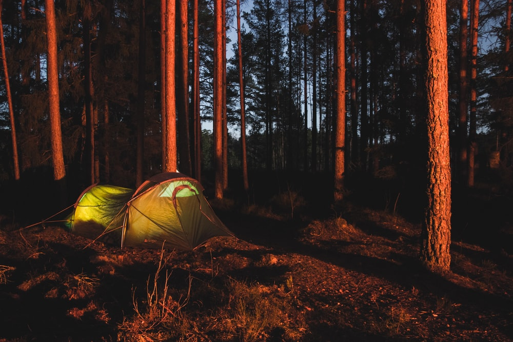 green camping tent