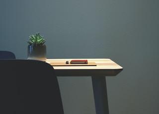 succulent plant on desk