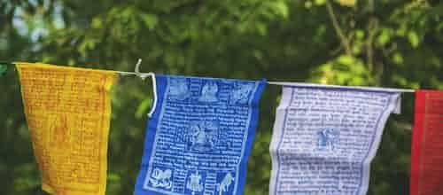 להכיר את החץ השני: מבט על שכול לאחר התאבדות דרך עיני הגישה הבודהיסטית