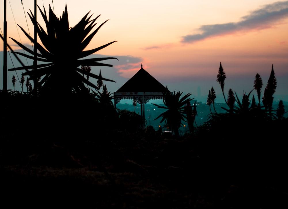 silhouette photography of gazebo
