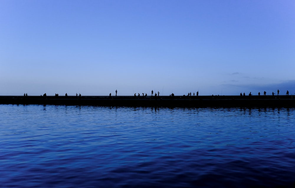 silhouette photo of people on dock above water