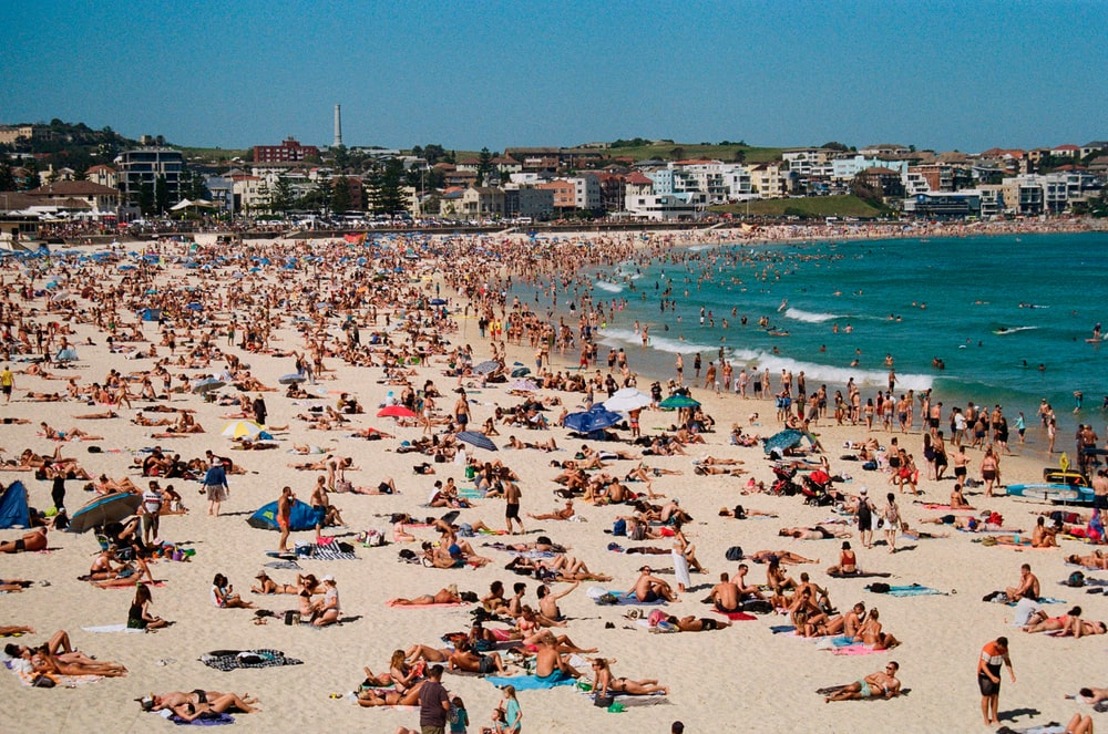 crowd of people on seashore during daytime