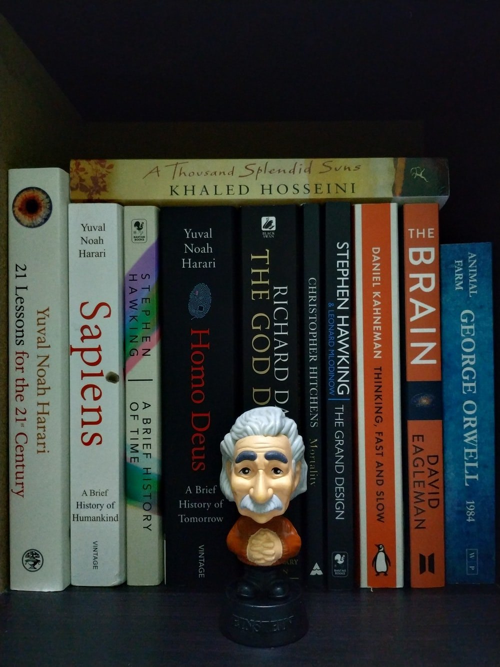 Albert Einstein mini figure besides books