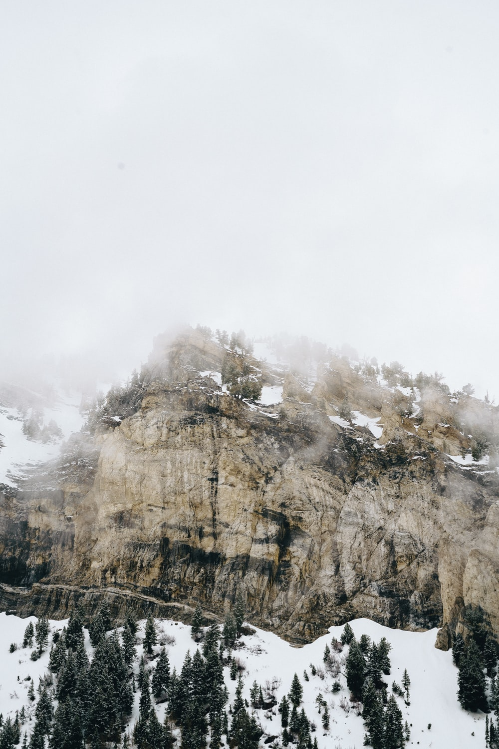 icy foggy mountain scenery