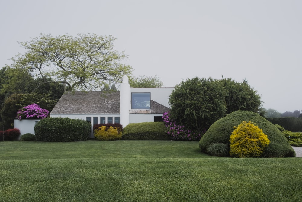 white 2-story house near trees