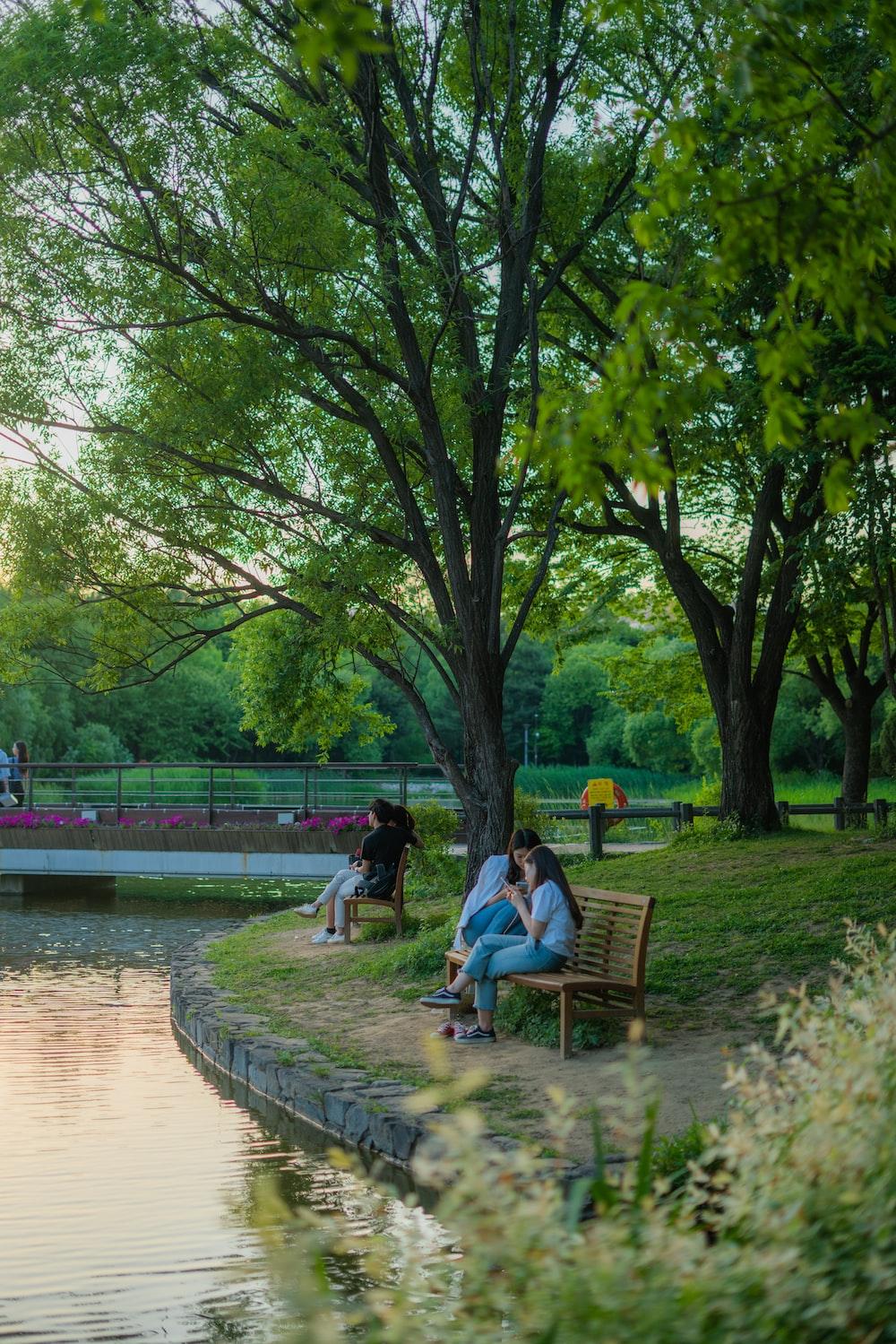 women sitting on bench