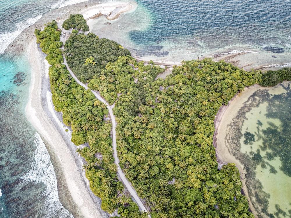 bird's eye view of an island