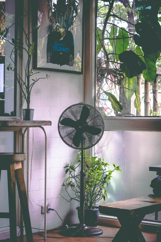 black pedestal fan near glass window
