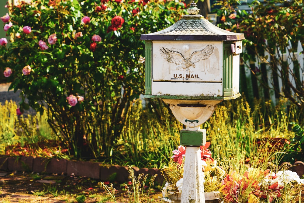 white and green US Mail pedestal mailbox near flowers