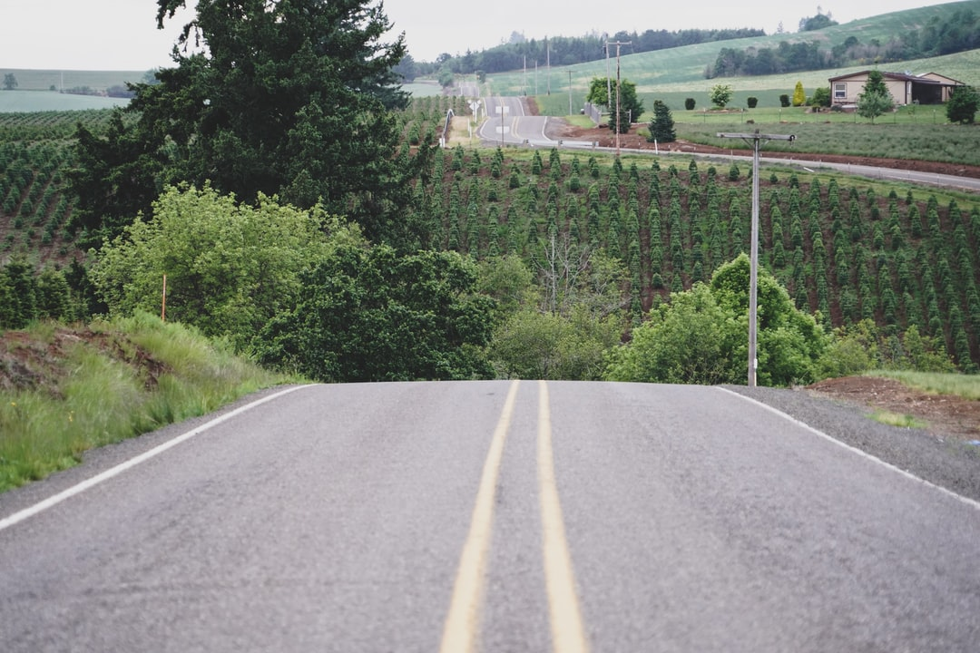 A perfect road shot symbolizing detours or the unexpected. Like my other road shot, this is