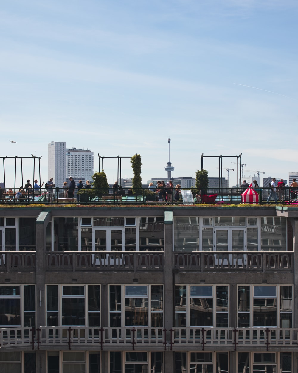 people on rooftop during daytime