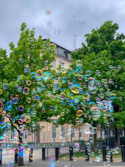 bubbles flying during daytime