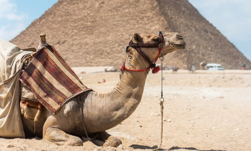 pyramid pickup line
