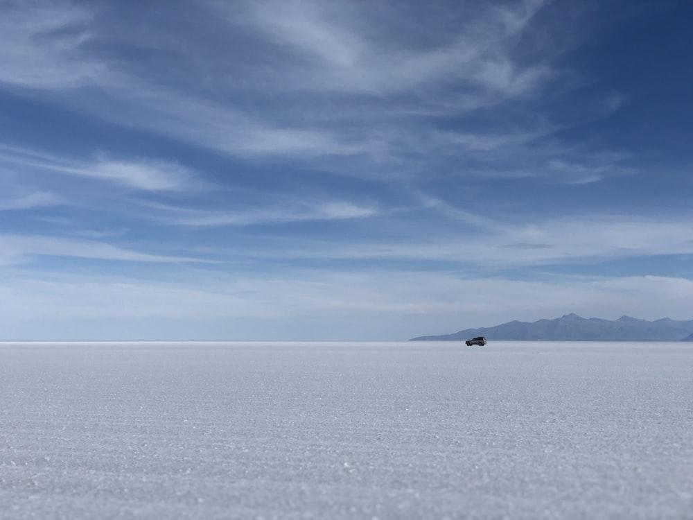 white field during daytime