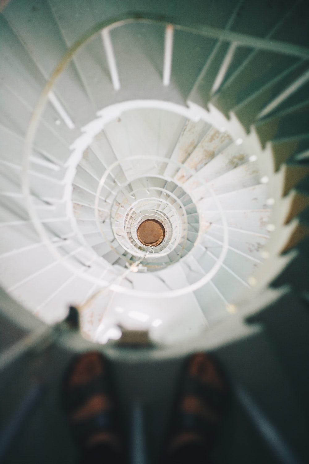 person standing on spiral staircase