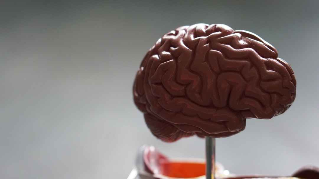 Nutritional smart drugs: this is your brain on food