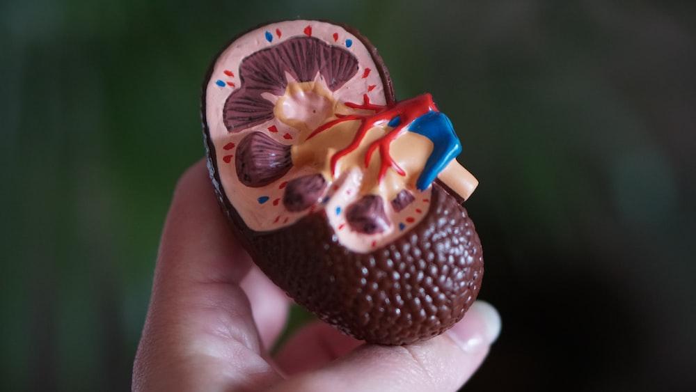brown kidney decor