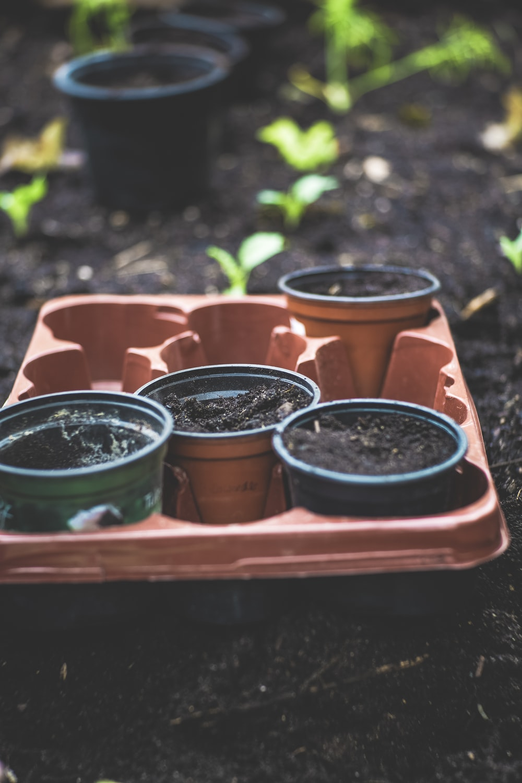 assorted-color plastic pots