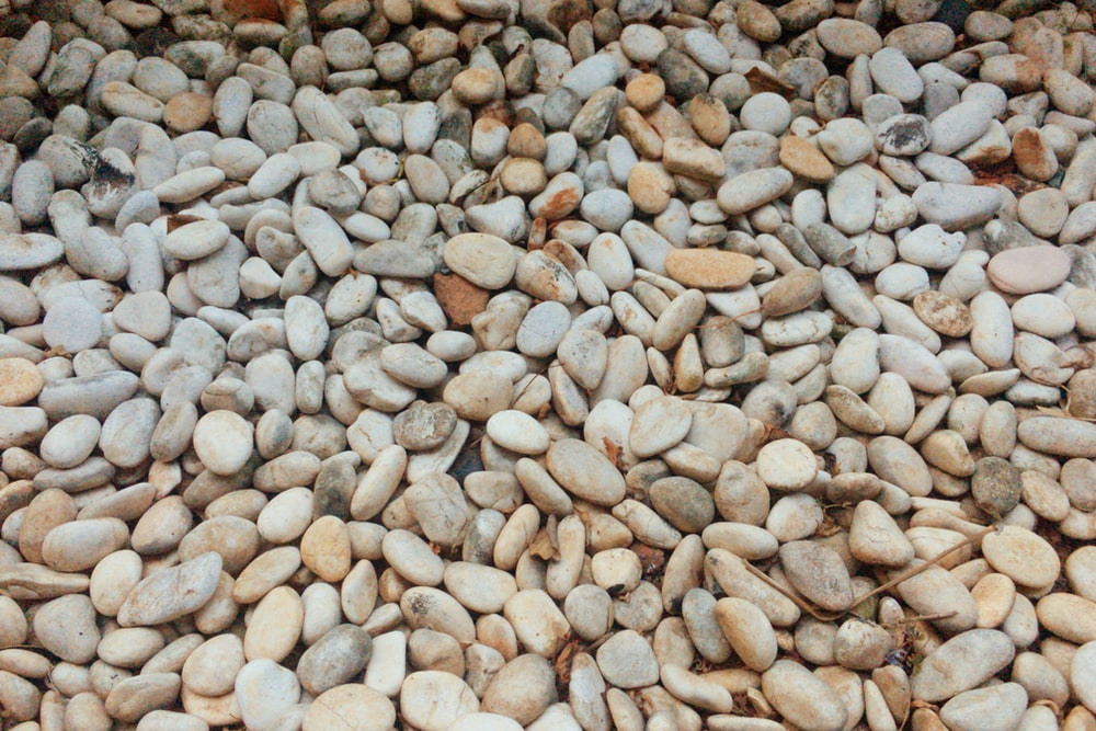 gray stone pebbles
