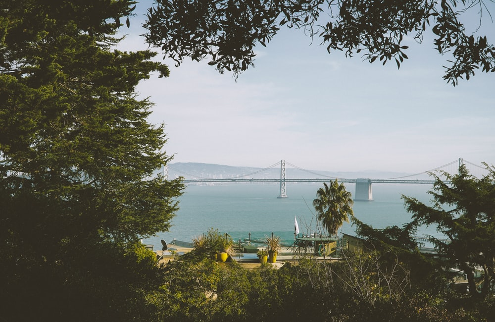 white bridge across bay