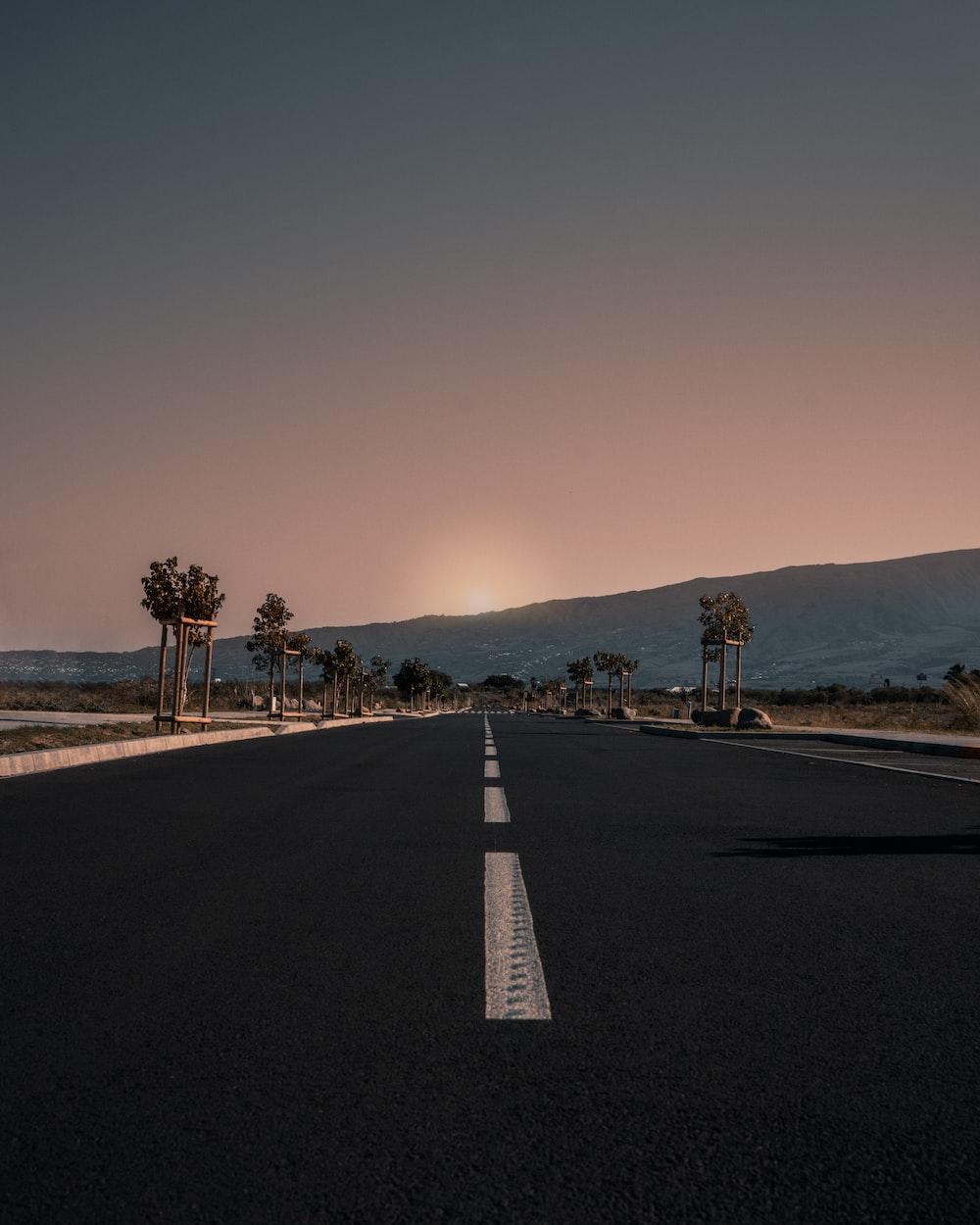 highway between trees during golden hour
