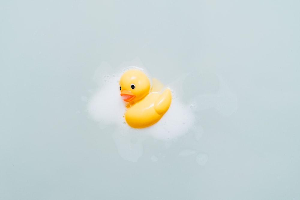 yellow bath duck