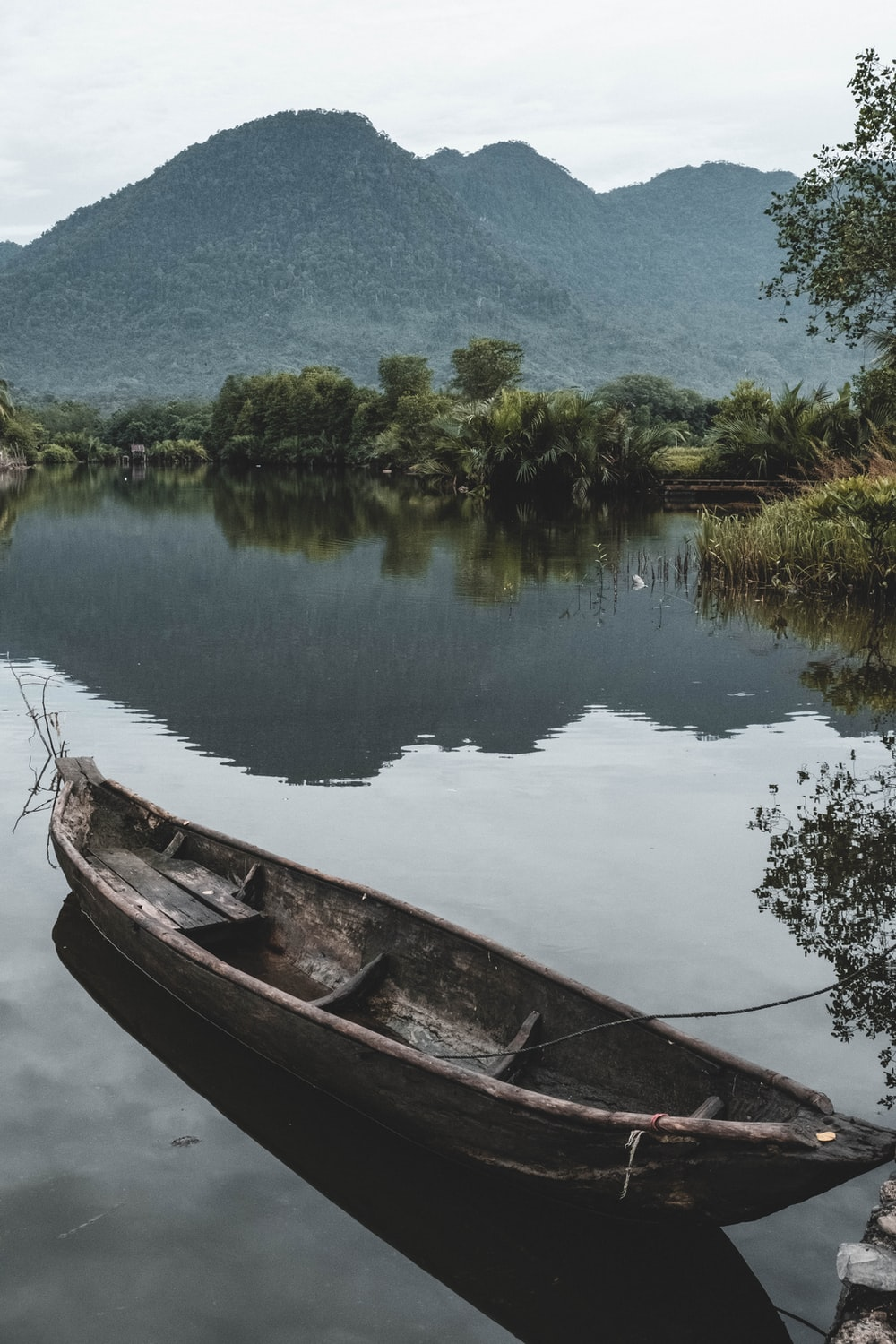 brown canoe on calm body of water near trees