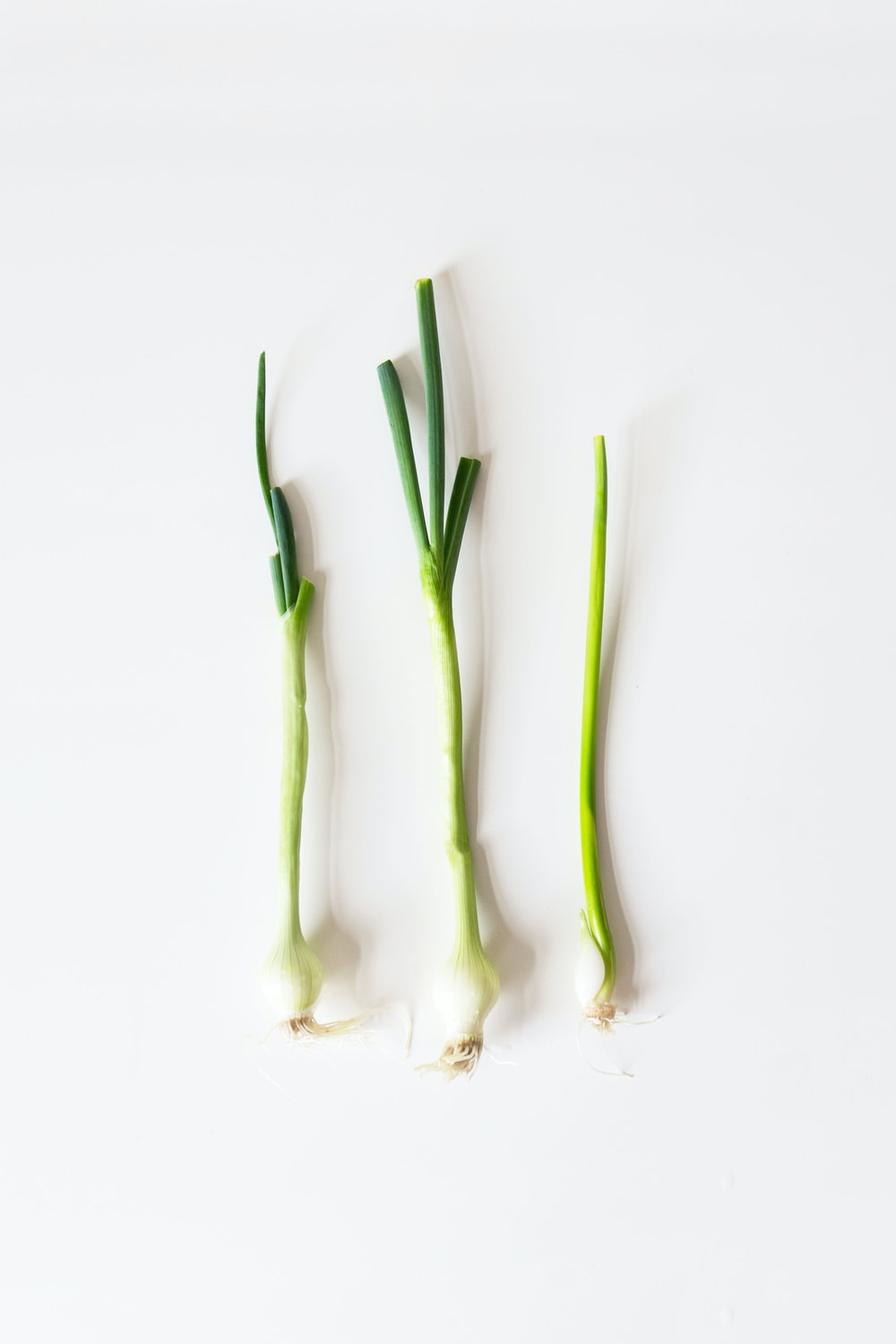 green spring onions