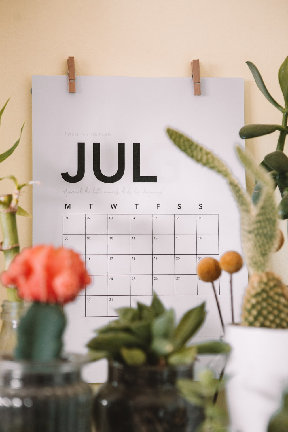 July calendar on focus photography