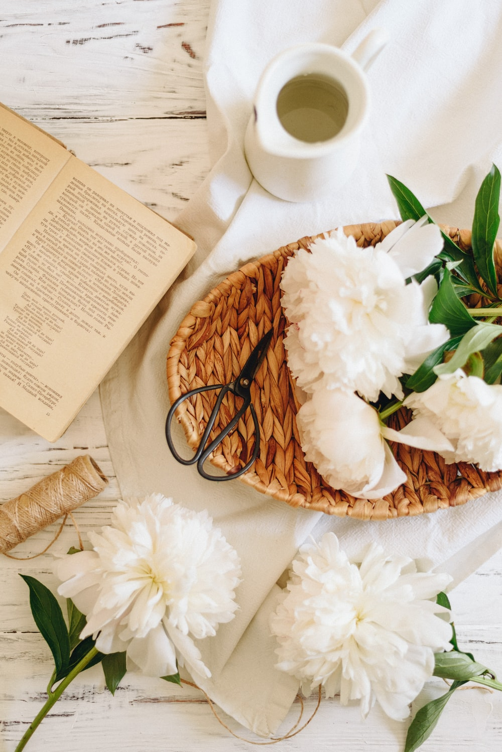 white-petaled flowers with book and pitcher