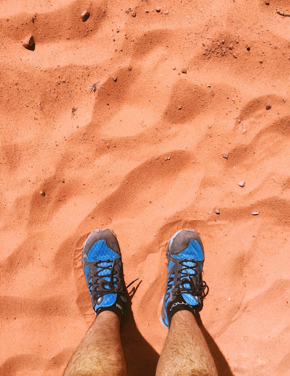 person wearing blue hiking shoes