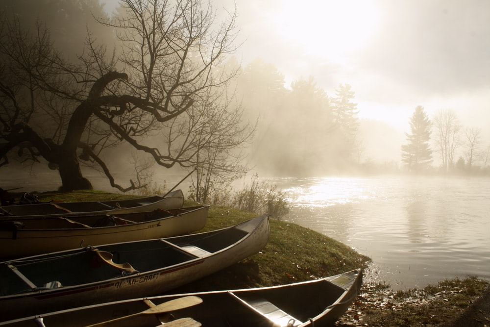 boats in river bank