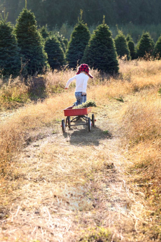 girl carrying orange pull wagon