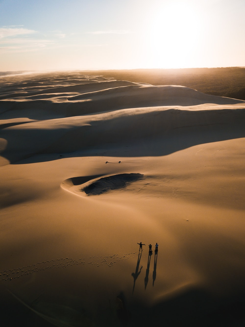 birds eye photography of people on desert