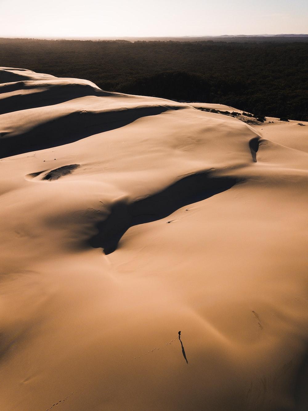 view of desert during golden hour