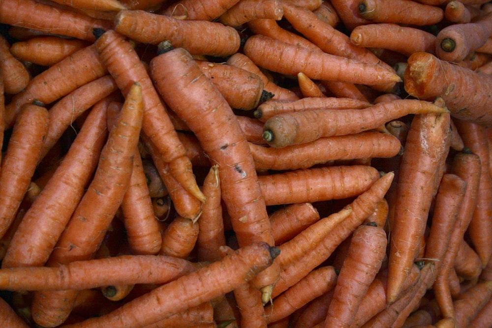 carrot lot photo