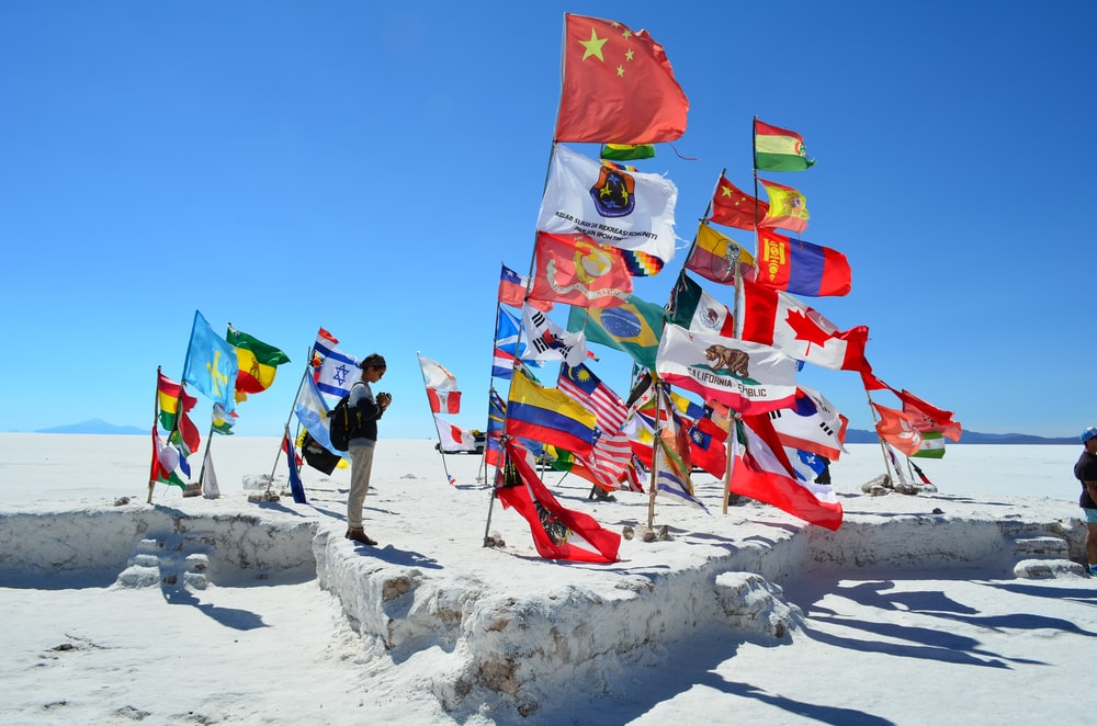 person standing in different United Nation flags on field under blue skies