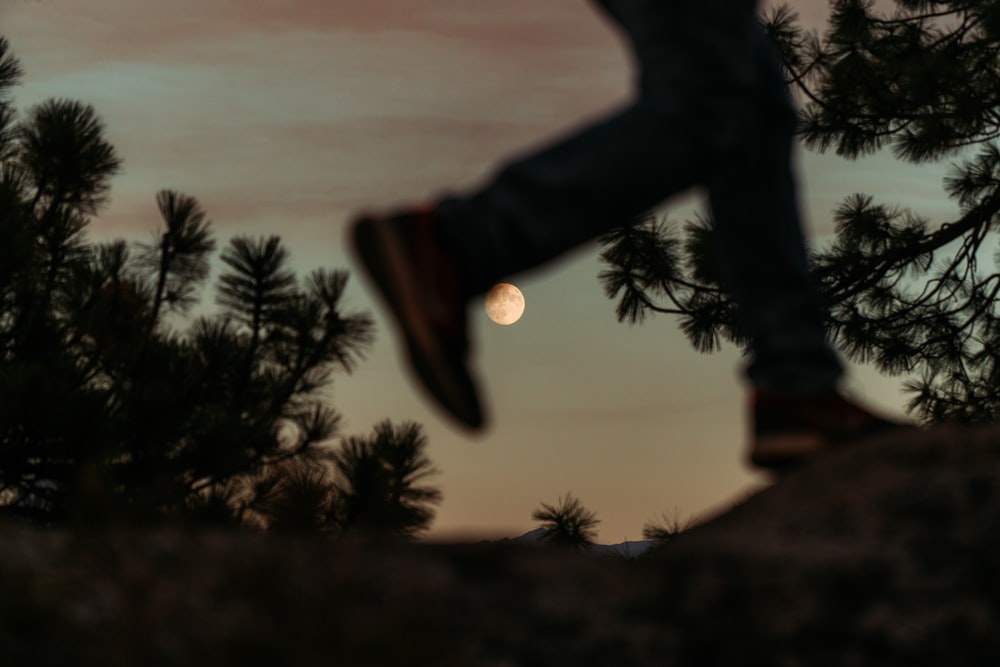 silhouette photo of person's feet and trees