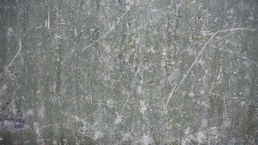 gray and white concrete wall