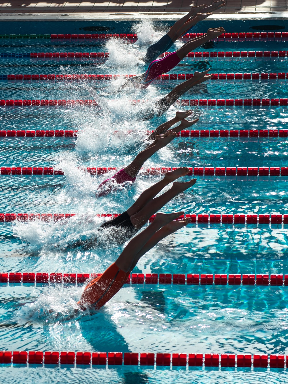 swimming competition during daytime