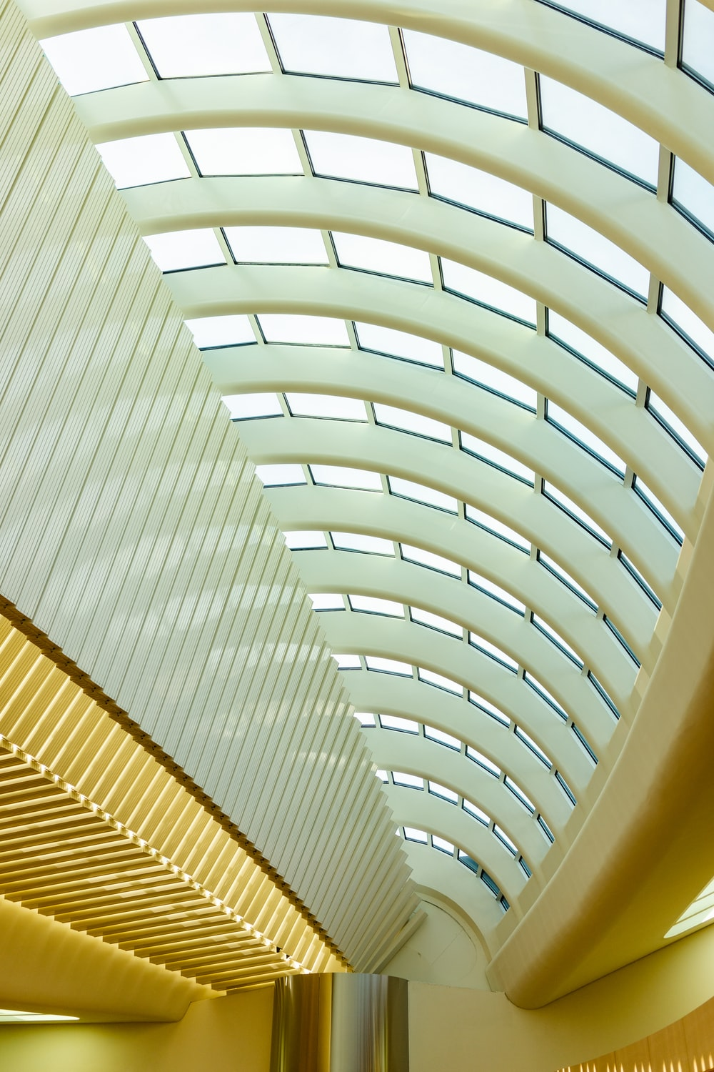architectural photo of white and gray ceiling