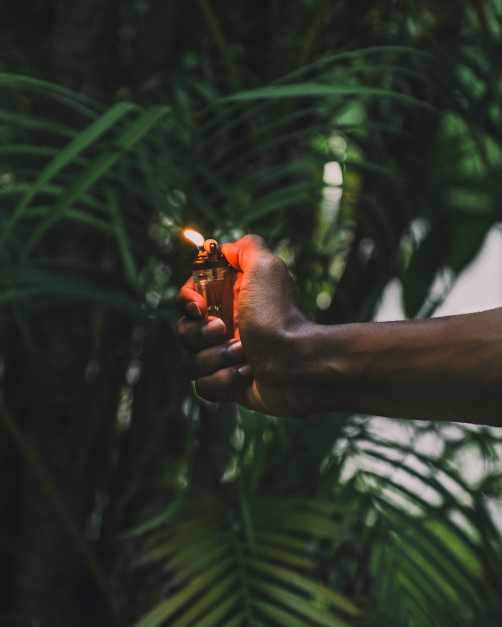 person holding lighter