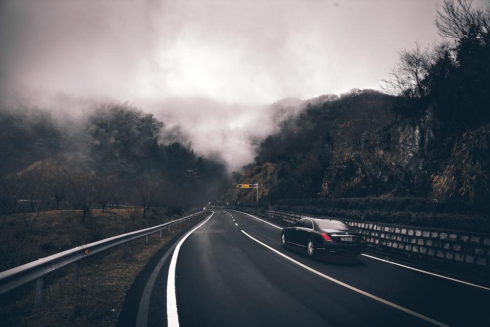 black sedan on road between lined trees