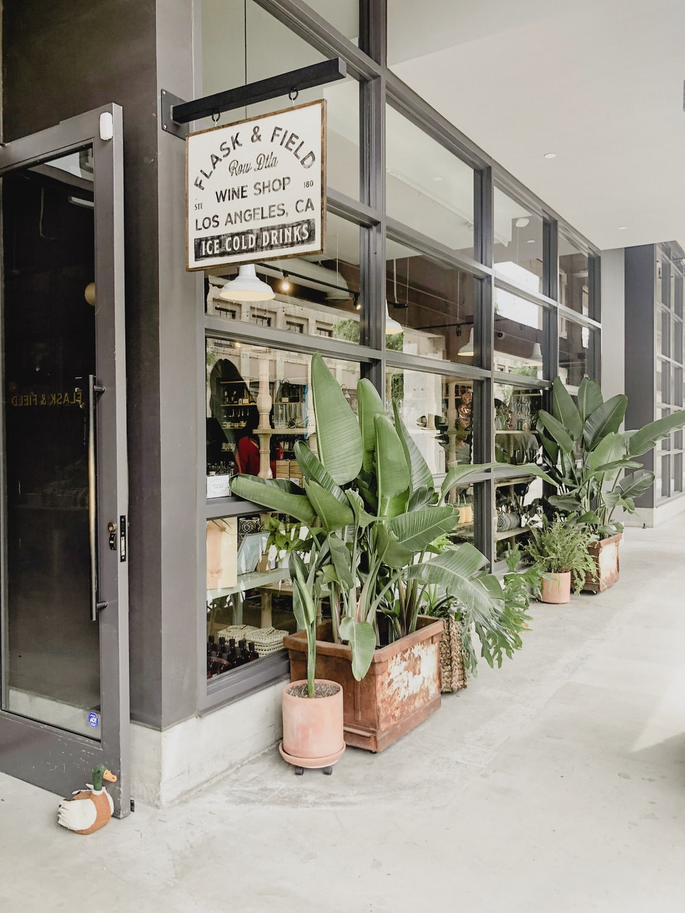 green-leafed plants outside store front