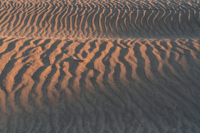 Texture photo of a sand dune about 15 minutes before sunset at the Christmas Valley Sand Dunes in the Oregon High Desert.