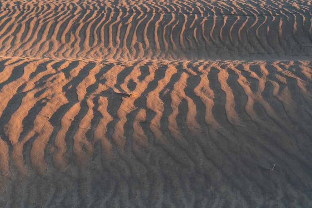 brown sand dunes